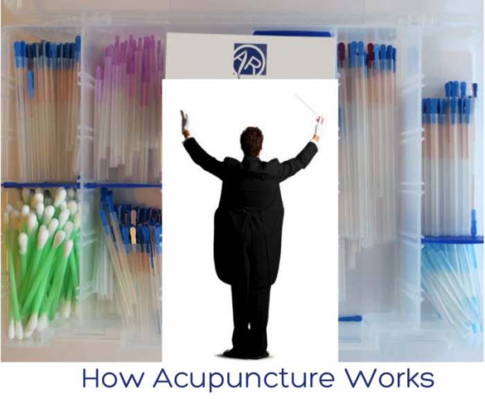 How Acupuncture Works   Dr Alex Ritza