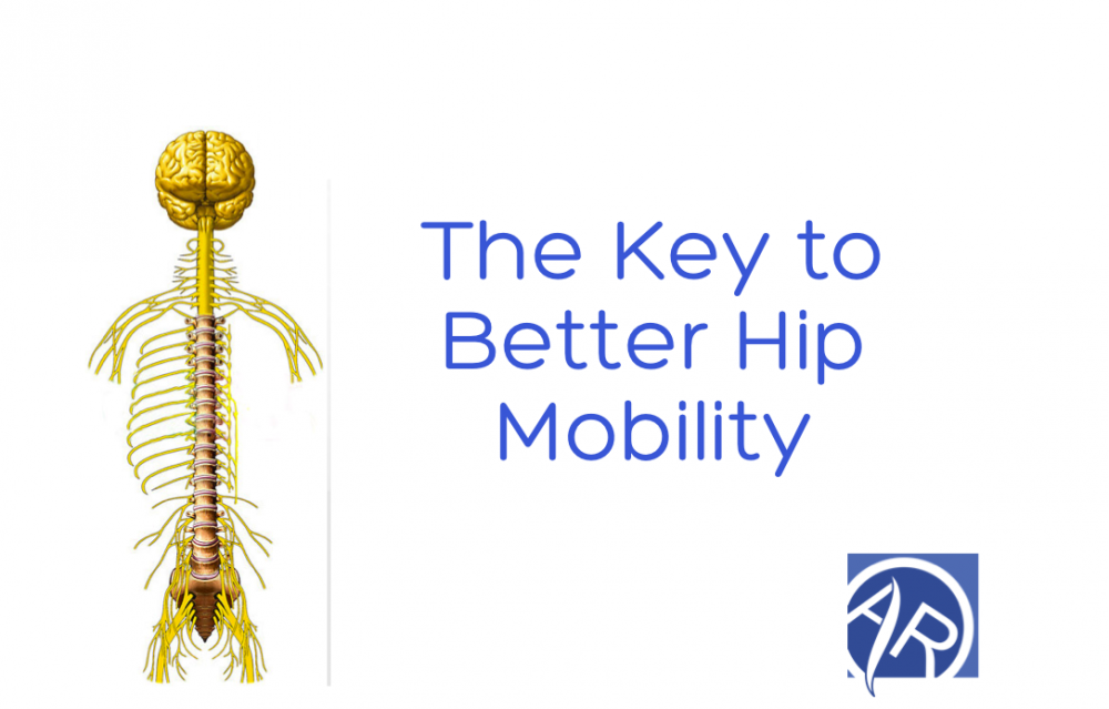 Better Hip Mobility using Isometric Exercises   Dr Alex Ritza   Downtown Toronto Chiropractor