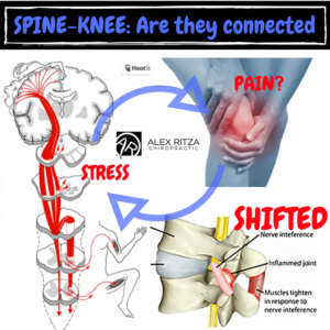 Dr Alex Ritza | Knee Pain | Runners Knee | Downtown Toronto Chiropractor