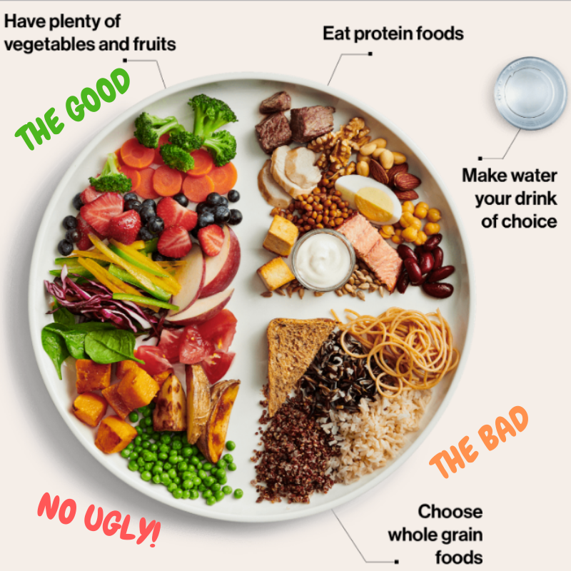 Dr Alex Ritza Canada's New Food Guide Review